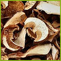 Dry porcini mushrooms