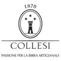 Collesi