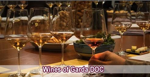 Wines of Garda DOC